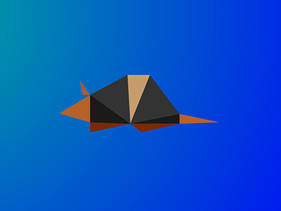 Armadillo / 10 triangles challenge