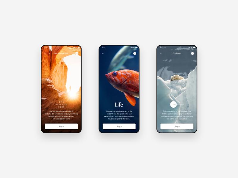 Netflix Show Screen (Redesign) logo net movie screen design clean wild user interface ui show netflix