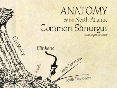 Schnurgus diagram excerpt