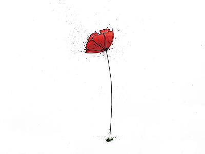 Poppy flower liner fine ink indian sketch drawing watercolor red flower poppy