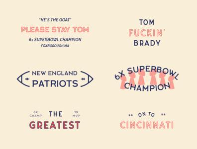 New England Patriots Flash