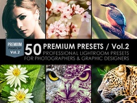 50 Premium Lightroom Presets / Vol.2