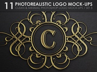 11 Photorealistic Logo Mock-Ups / Set 3 - Special Straight View