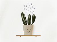 Grumpy Succulent using Procreate