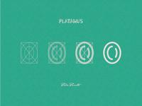 """Platanus """"0"""""""