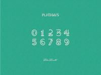 Platanus 0123456789