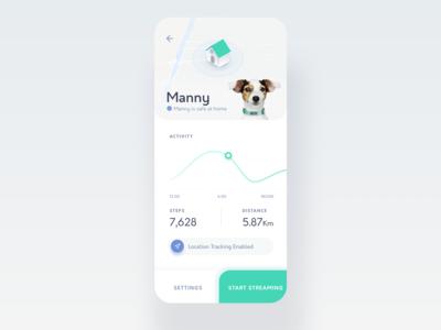 Pet Activity Dashboard