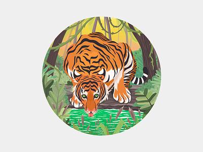 Tiger 野生动物 jungle 雨林 自然 老虎 animal tiger procreate illustration wildlife
