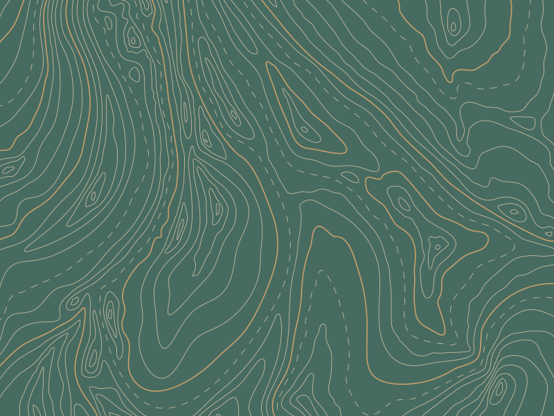 Topographic Pattern design illustration pattern design topography topograph