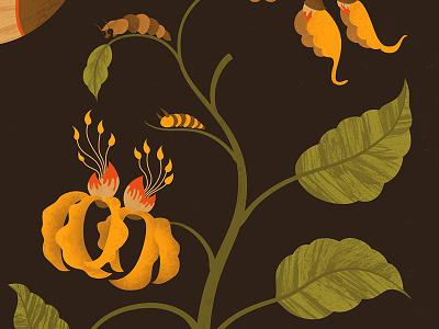 Metamorphosis nature illustration science art butterfly botanical