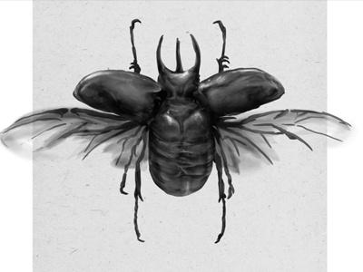 Rhinoceros beetle illustration wacom photoshop rhinoceros beetle speed paint beetle illustration digital painting
