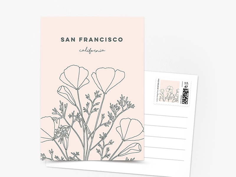 Golden California Poppies sketching stationery belia simm postcard san francisco flowers poppies california golden california poppies