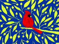 Xmas Cardinal