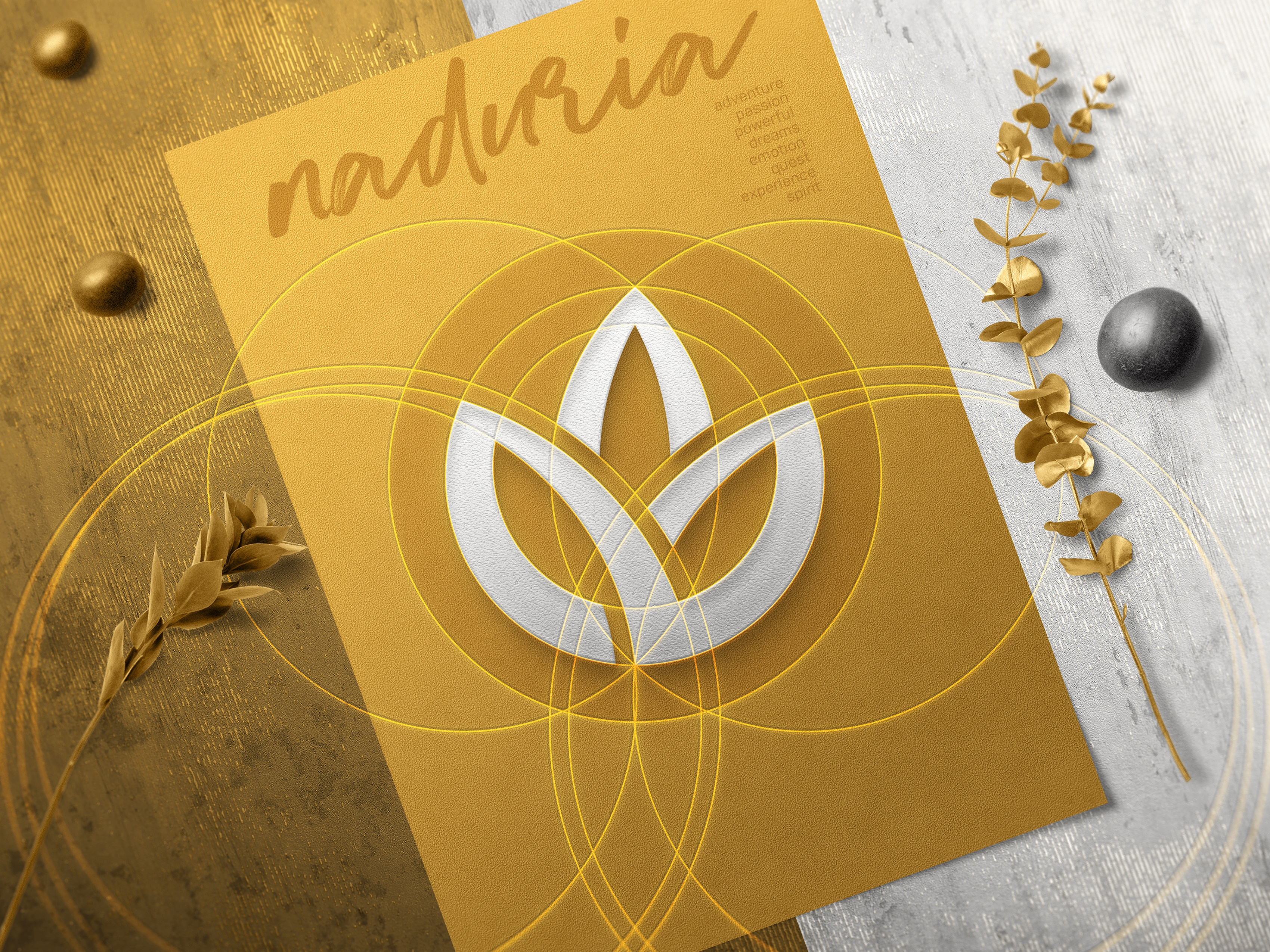 Naduria     logotype construction concept v.1.1 3400x2550