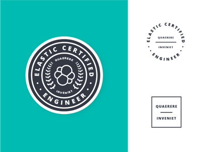 Elastic Certification Badge academic ivy crest training emblem seal brackets certification patch badge
