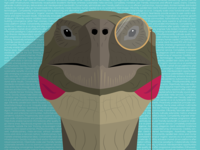Turtle Sir Illustration
