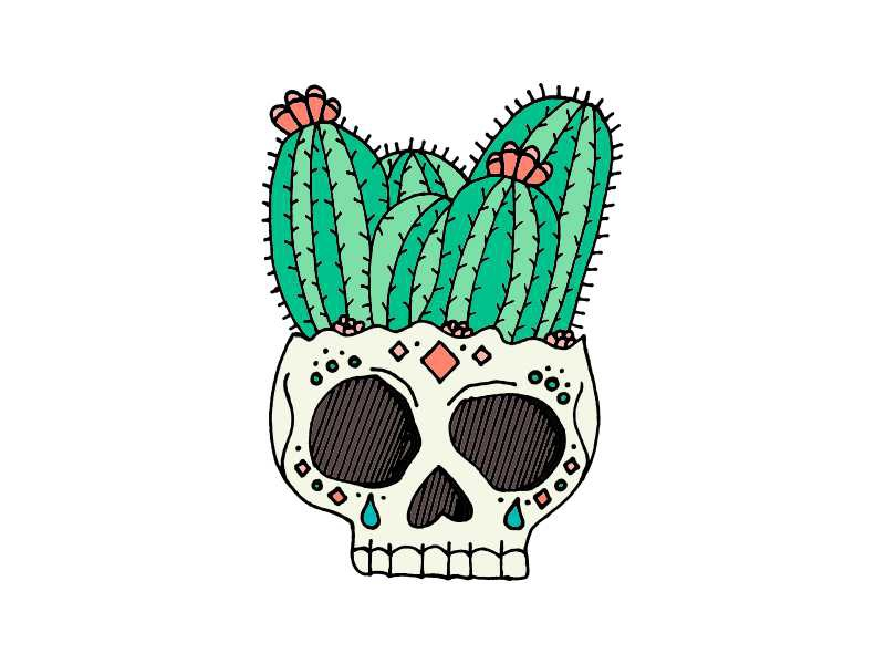 Cactus Skull sugar skull succulent potted plant skull arizona desert southwest cactus