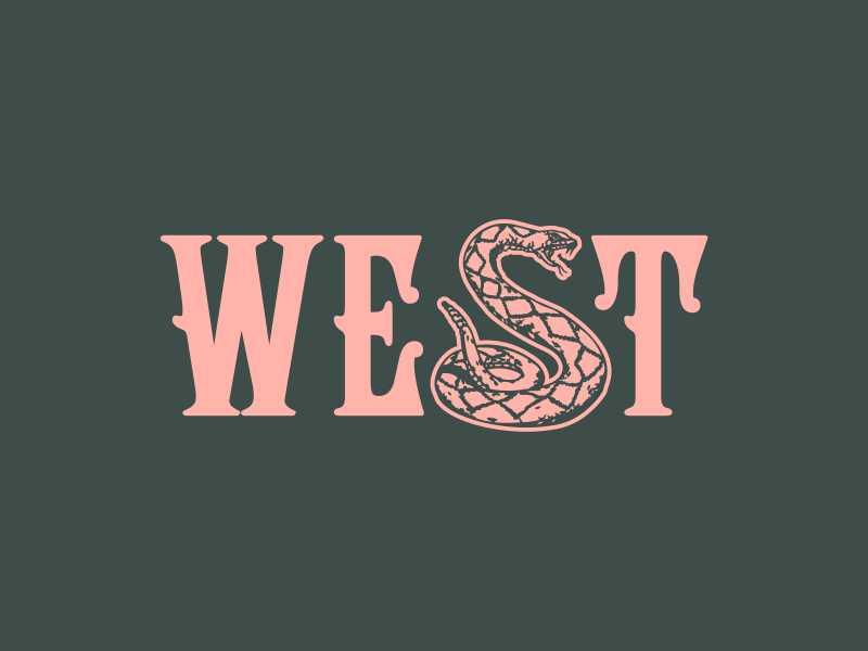 Diamond West diamond snake rattlesnake southwest arizona desert west