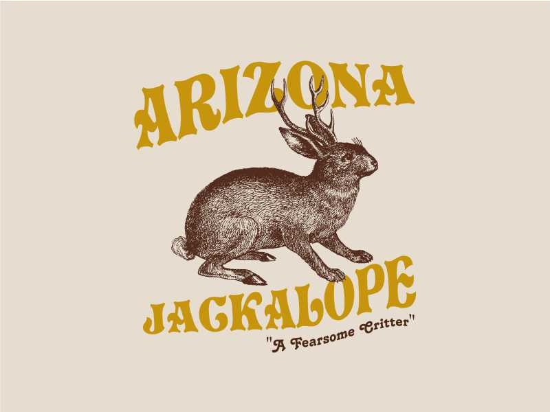 Arizona Jackalope rabbit animal jackalope jackrabbit southwest arizona