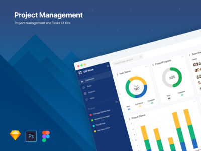 Project Management and Tasks