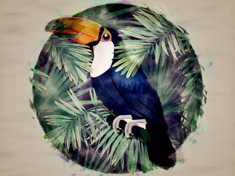 Hornbill_Digital Art plants forest tropical hornbill graphicdesign digital illustration digital painting digitalart illustration art illustrator designer design