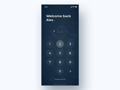 PlainGIS mobile : Unlock process appdesign plaingis objectcard object info unlock lockscreen ios mobile geo map gis interface design interace ux ui