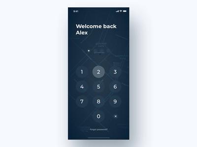 PlainGIS mobile : Unlock process