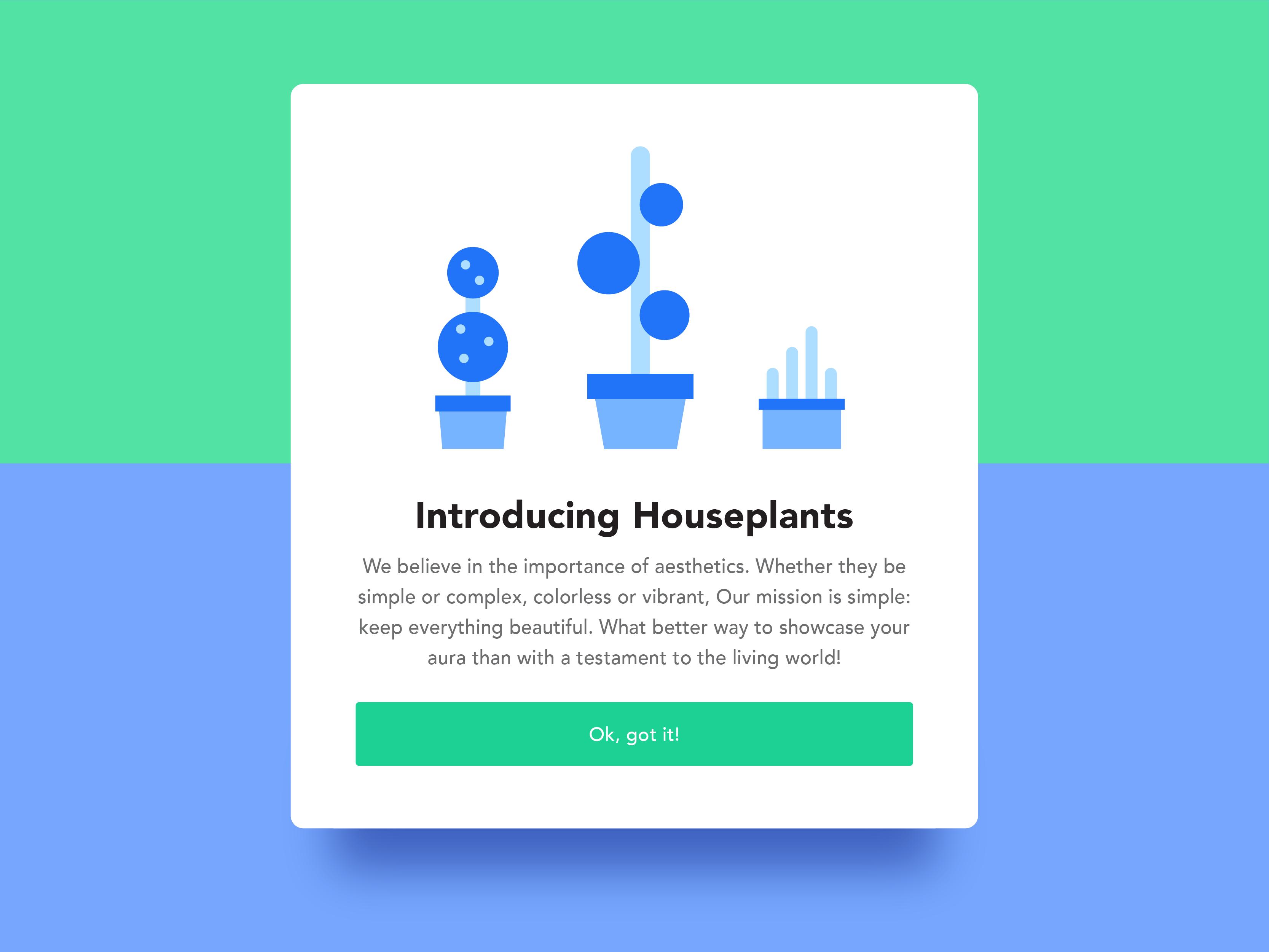 Houseplants files 03