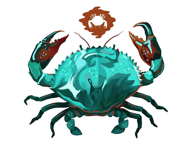 Crab Battle illustration brush digital painting drawing animal color reflection battle crab