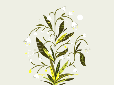 Konwalie ✽ patrykbelc belcdesign vectors illustrator nature illustration nature konwalie leafs flowers