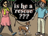 """is he a rescue?"""