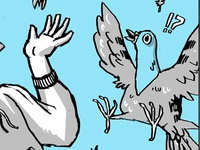 Surprised Pigeon