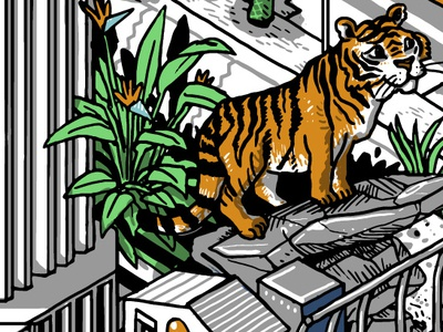 Tiger line mural wacom drawing digital color isometric illustration isometric illustration