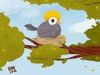 Birdie nest 🐦🐦 😊