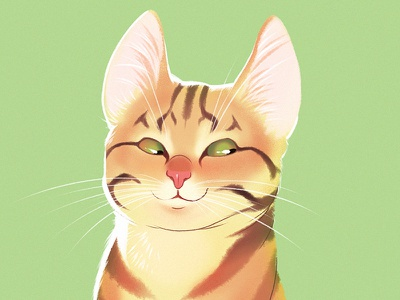 Red-haired cat illustration character character design cat cartoon