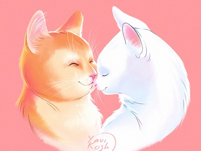 Cats in love illustration character character design cat cartoon