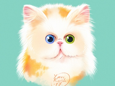 Kitten illustration character character design cat cartoon