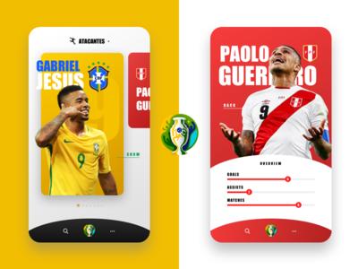 Copa America 2019 - Finals
