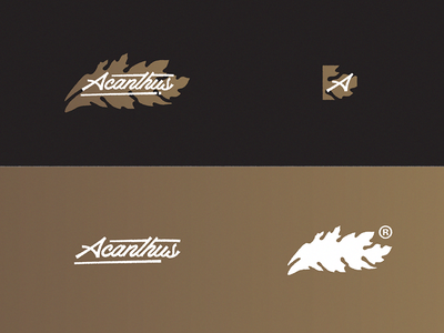 Acanthus App | Branding proposal app acanthus visual corporate identity branding graphic design logo