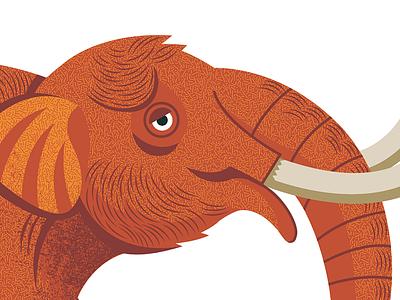 Hey there, Big Boy! illustration animal