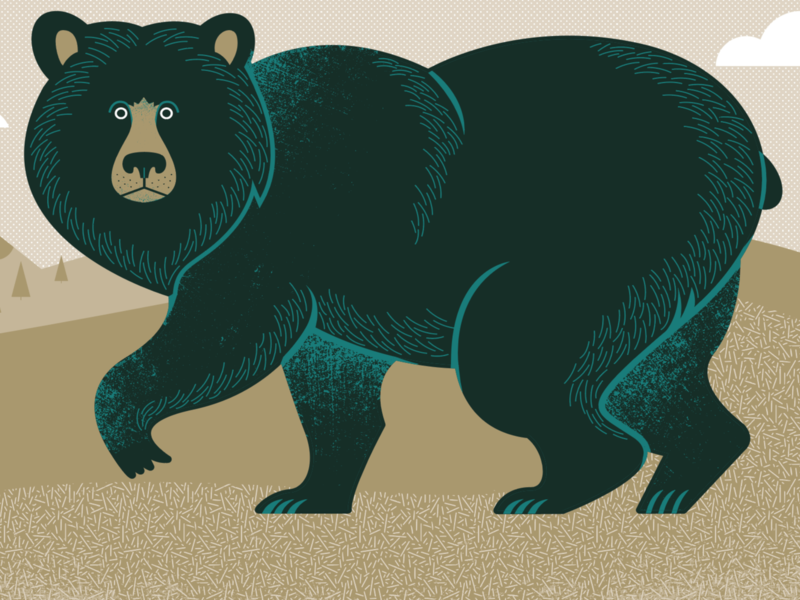 Bear with me... tennessee illustration bear