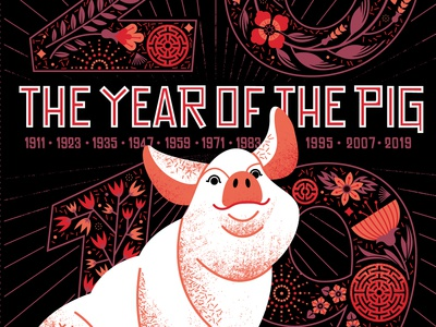 Year of the Pig new year illustration pig