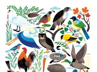 Bird etsy