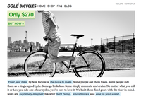 2010 Solé Bicycles homepage design