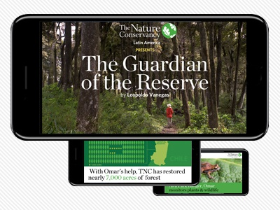The Nature Conservancy infographics conservation environment nature stories social video