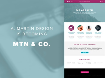 MTN & Co. (coming soon) web design user interface branding proxima nova