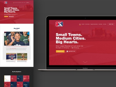 MiLB Partnerships Landing Page visual design landing page ux ui milb mlb baseball minor league baseball
