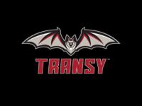 Transy tertiary mark