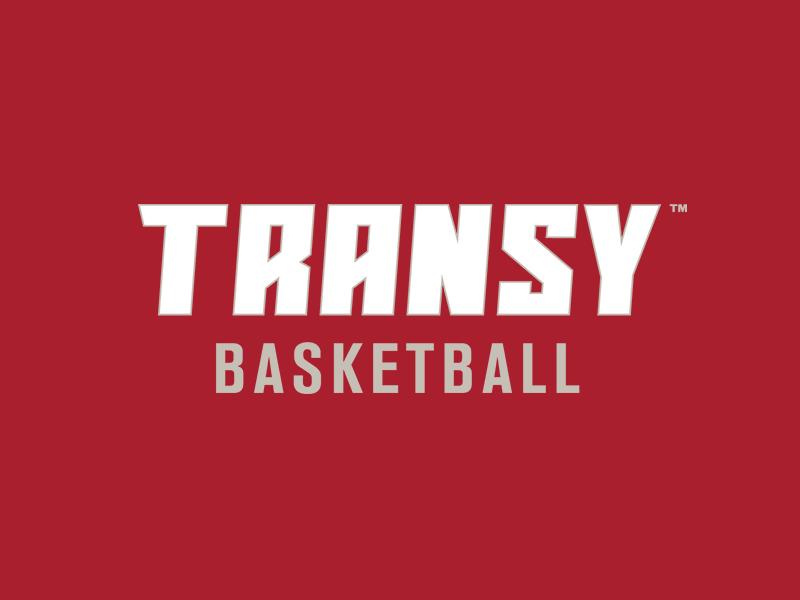 Transy workmark
