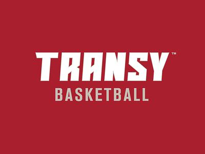 Transylvania University Athletics Identity System typography wordmarks sports branding athletics transylvania vampire bat logos sports